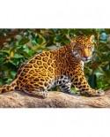 Puzzle Castorland - Little Jaguar, 260 Piese