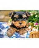 Puzzle Castorland - Puppy On A Picnic, 300 Piese