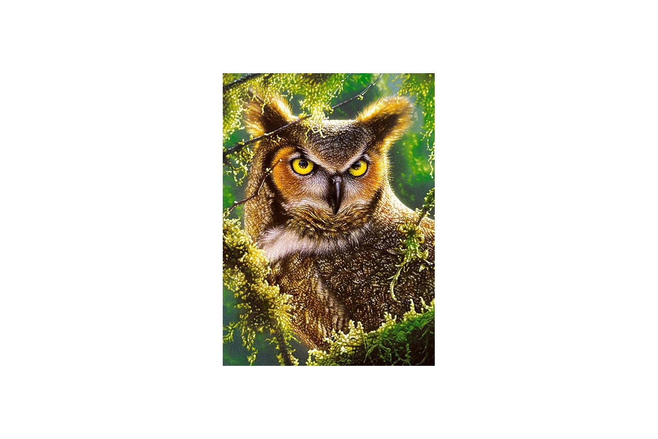 Puzzle Castorland - Watching & Waiting, 300 Piese