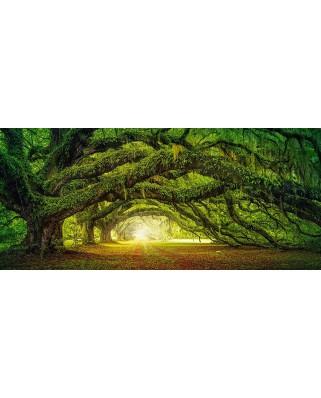 Puzzle Castorland Panoramic - Passage, 600 Piese
