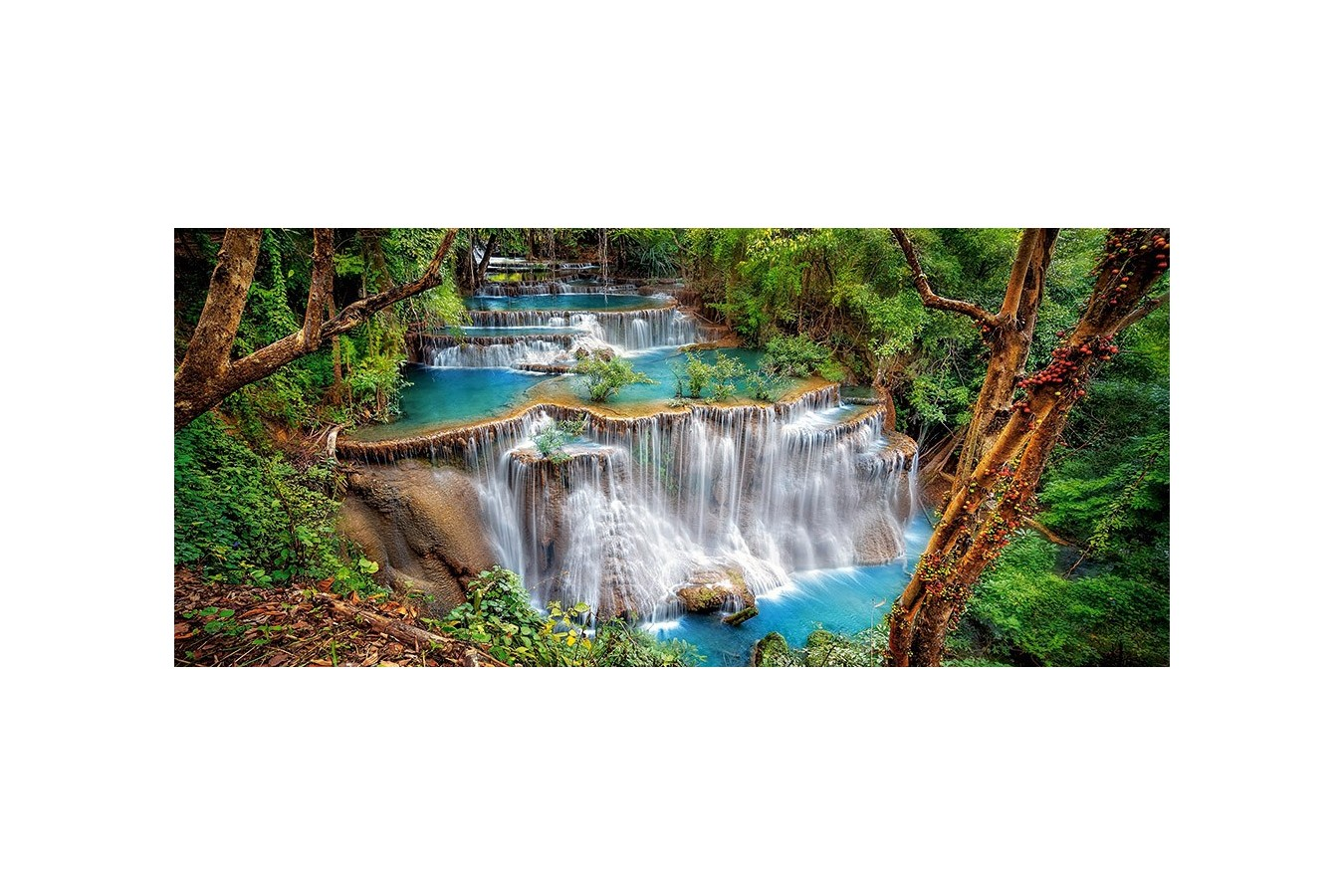 Puzzle Castorland Panoramic - The Clearing, 600 Piese