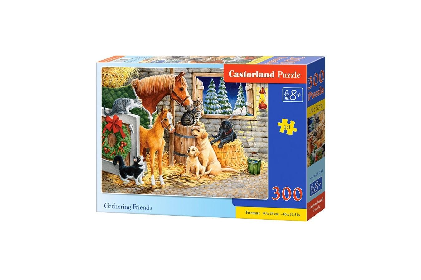 Puzzle Castorland - Gathering Friends, 300 piese