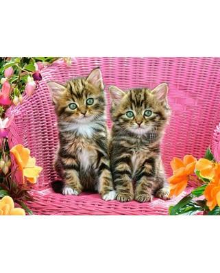 Puzzle Castorland - Kittens on garden chair, 120 piese