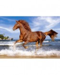 Puzzle Castorland - Horse on the beach, 500 piese