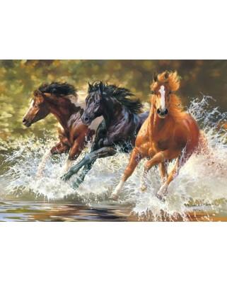 Puzzle Castorland - Splash, 500 piese