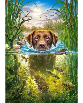Puzzle Castorland - Swimming Dog, 500 piese