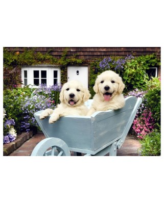 Puzzle Anatolian - Puppies In A Wheelbarrow, 260 piese (3310)