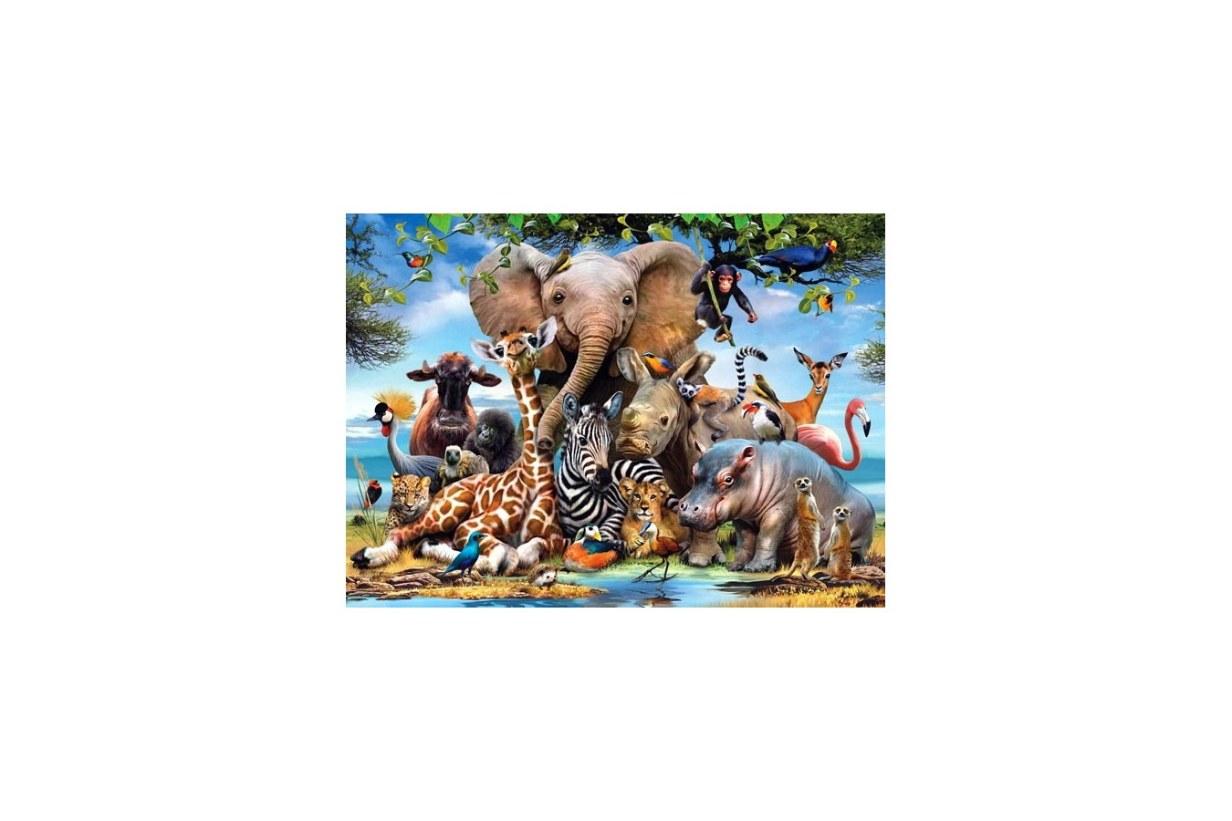 Puzzle Anatolian - Africa Smile, 1000 piese (1043)