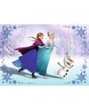Puzzle Ravensburger - Frozen Surori Pentru Totdeauna, 2x24 piese (09115)