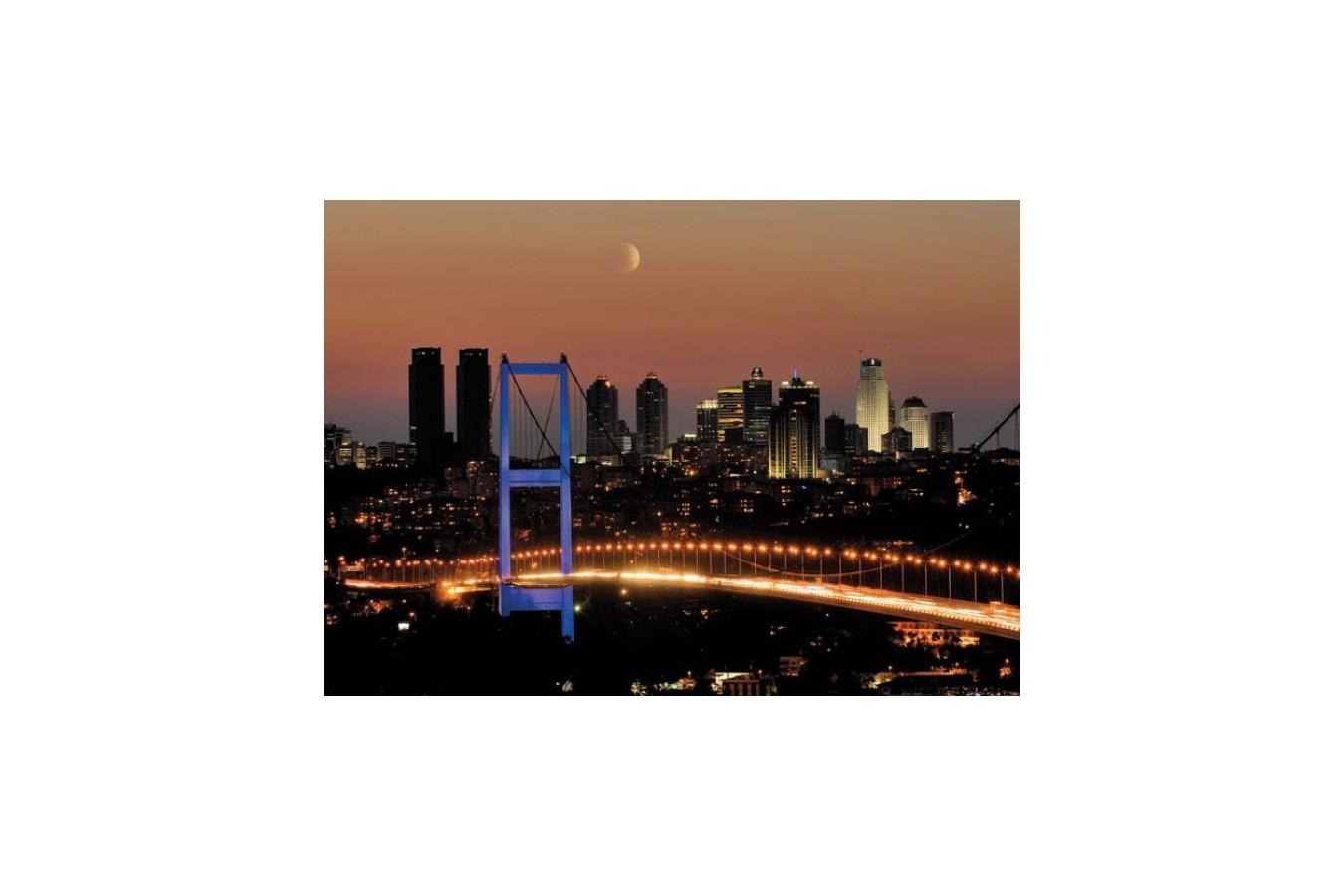 Puzzle Educa - Neon Bosphorus Bridge, 1000 piese (14755)