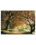 Puzzle Educa - Autumn Walk, 2000 piese (14819)