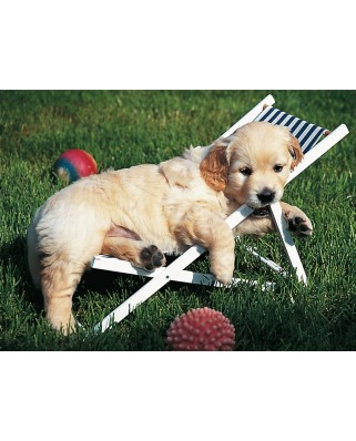 Puzzle Ravensburger - Golden Retriever, 500 piese (14179)