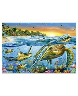 Puzzle Educa - Marine Turtles, 500 piese (15147)