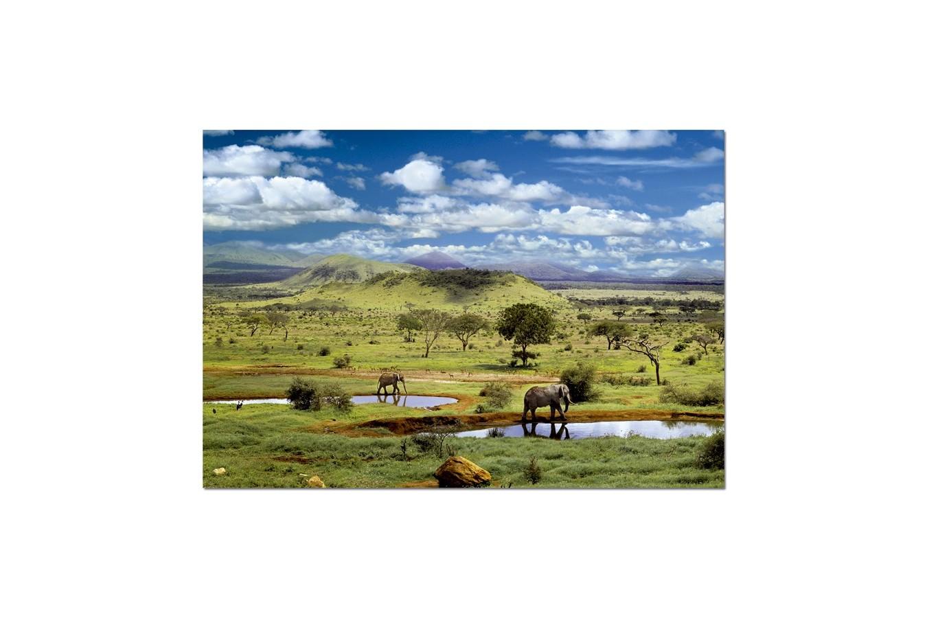 Puzzle Educa - Tsavo National Park, Kenya, 500 piese (15152)