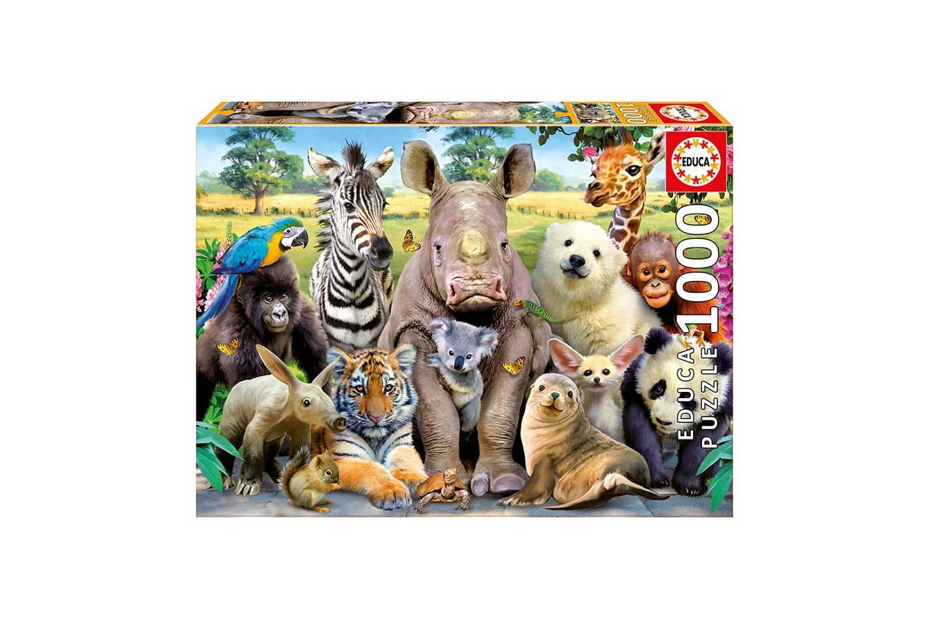 Puzzle Educa - School Class Photo, 1000 piese, include lipici puzzle (15517)