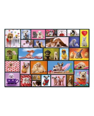 Puzzle Educa - Shared Moments, 1000 piese, include lipici puzzle (15518)