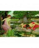 Puzzle Educa - John William Waterhouse: Echo and Narcissus, 3000 piese (15541)