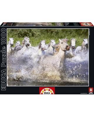 Puzzle Educa - Camargue horses, 1000 piese (15988)