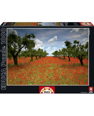 Puzzle Educa - Field of Poppies, 1000 piese (15992)