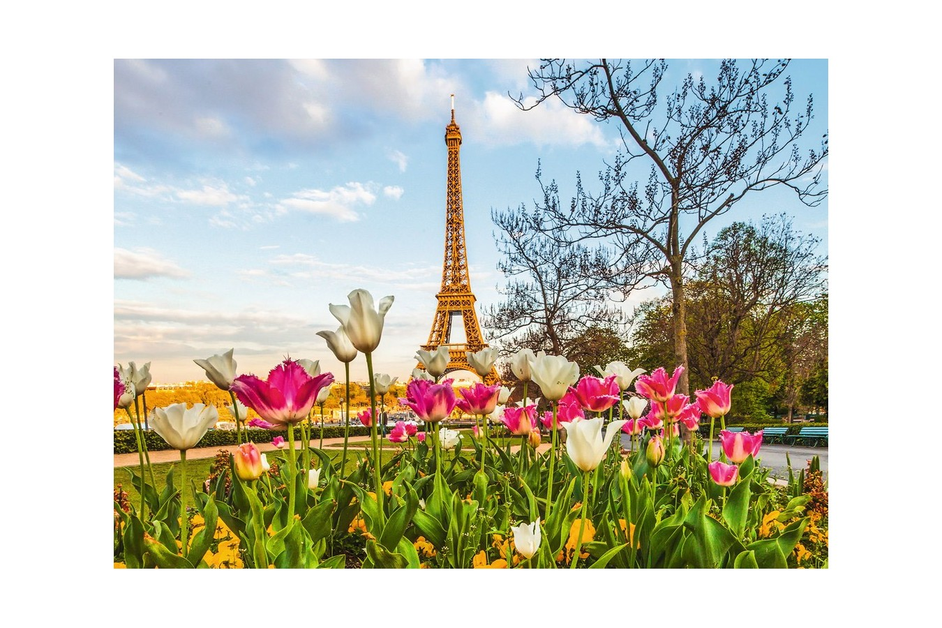Puzzle Ravensburger - Lalele Si Turnul Eiffel, 1000 piese (19525)