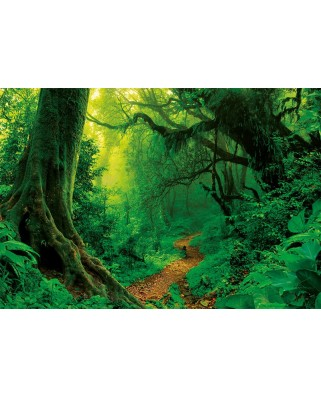 Puzzle Educa - Enchanted Forest, 1000 piese, include lipici puzzle (17098)