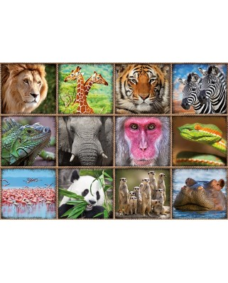 Puzzle Educa - Wild animals collage, 1000 piese, include lipici puzzle (17656)