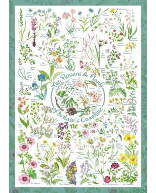 Puzzle Schmidt - Flori & Plante, 1.000 piese (59568)