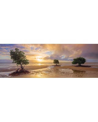 Puzzle panoramic Schmidt - Cape Tribulation, Daintree National Park, Queensland, Australia, 1.000 piese (59394)