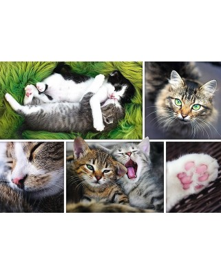 Puzzle Trefl - Collage - Cats, 1500 piese (61520)