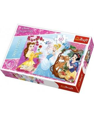 Puzzle Trefl - Disney Princess, 60 piese (64852)