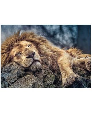 Puzzle Trefl - Sleeping Lion, 1.000 piese (58126)