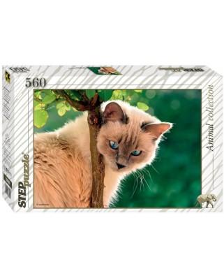 Puzzle Step - Cat, 560 piese (60270)
