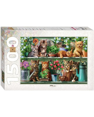 Puzzle Step - Kittens in the Shelf, 1.500 piese (60346)