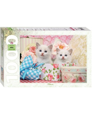 Puzzle Step - Kittens, 1.000 piese (60287)