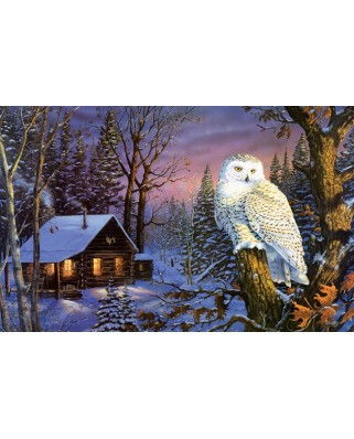 Puzzle SunsOut - Terry Doughty: Night Watch, 1.000 piese (64351)