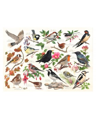 Puzzle The House of Puzzles - Birds In My Garden, 1.000 piese (65177)