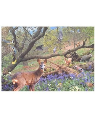 Puzzle The House of Puzzles - Bluebell Wood, 500 piese (56891)