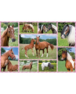 Puzzle Schmidt - Beautiful Horses, 150 piese (56269)
