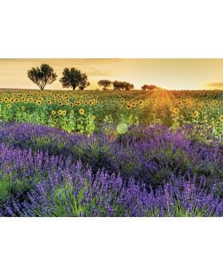 Puzzle Nathan - Fields of Provence, 1.000 piese (62542)