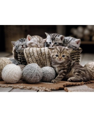 Puzzle Nathan - Kittens, 1.500 piese (62557)