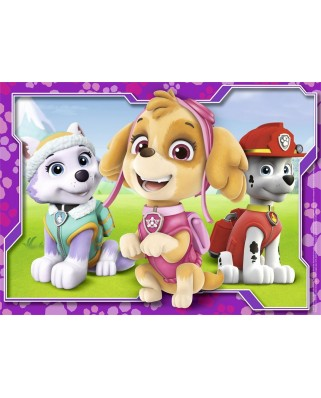 Puzzle Nathan - Paw Patrol, 45 piese (62490)