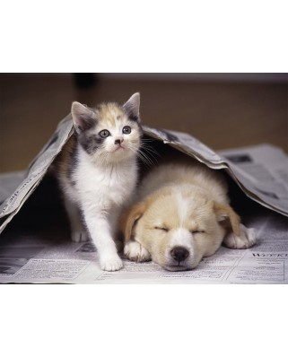 Puzzle Nathan - Puppy and Kitten, 250 piese (52658)