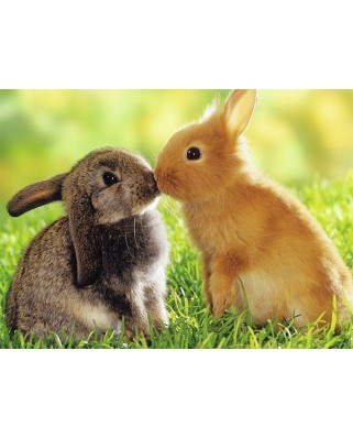 Puzzle Nathan - Rabbit Kisses, 500 piese (62525)