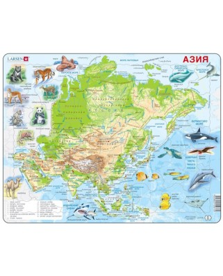 Puzzle Larsen - Asia (in Russian), 63 piese (59470)