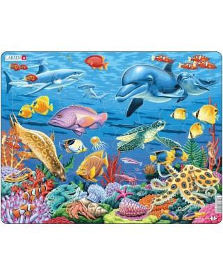 Puzzle Larsen - Coral Reef, 35 piese (48429)