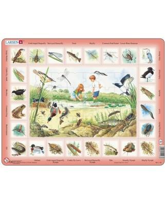 Puzzle Larsen - Der Teich (auf Englisch), 48 piese (48754)