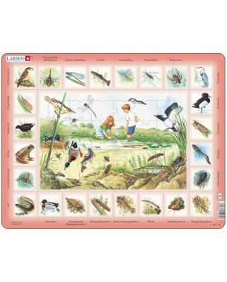 Puzzle Larsen - Der Teich, 48 piese (48771)