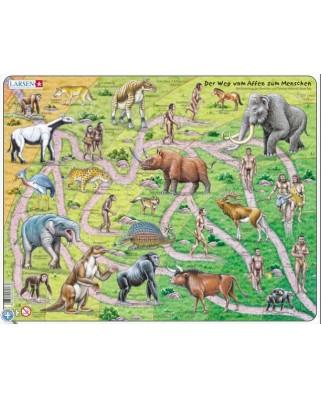 Puzzle Larsen - Der Weg vom Affen zum Menschen, 83 piese (48436)