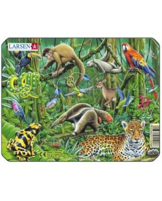 Puzzle Larsen - Exotic Animals, 11 piese (48487)