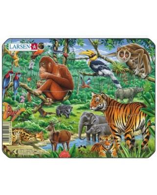 Puzzle Larsen - Exotic Animals, 11 piese (48488)